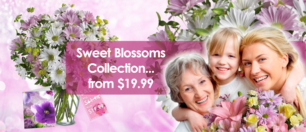 /Specials/Sweet-Blossoms-Collection.html